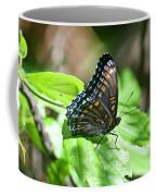 Red-spotted Purple 4172 Coffee Mug