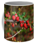 Red Spring Buds Coffee Mug
