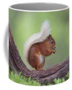 Red Squirrel Curved Log Coffee Mug