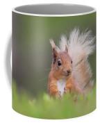 Red Squirrel In Vegetation Coffee Mug