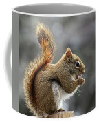 Red Squirrel On Wooden Fence II Coffee Mug