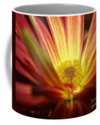 Red Sunflower 3 Coffee Mug