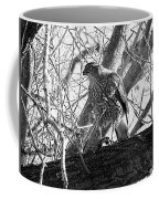 Red Tail Hawk In Black And White Coffee Mug by Deleas Kilgore