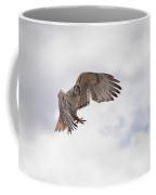 Red Tail Hawk In Sky Coffee Mug