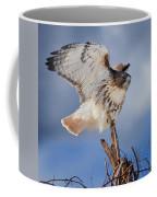 Red Tail Hawk Perch Coffee Mug