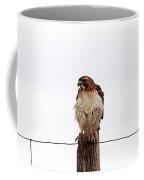Red Tail I Coffee Mug