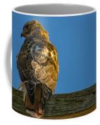 Red Tailed Hawk  IIi  Coffee Mug