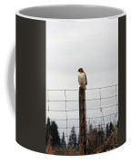 Red Tailed Hawk On The Lookout Coffee Mug