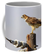 Red Tailed Hawk Perched Coffee Mug