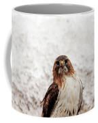 Red Tailed Hawk Portrait Coffee Mug
