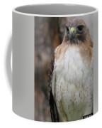Red-tailed Hawks Coffee Mug