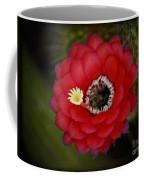Red Torch Cactus-echinopsis  Coffee Mug