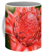 Red Torch Ginger Coffee Mug