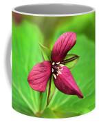 Red Trillium Wildflower Coffee Mug