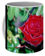 Red Velvet Rose Coffee Mug