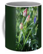 Red White Tulips Coffee Mug