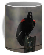 Red Winged Black Bird Coffee Mug