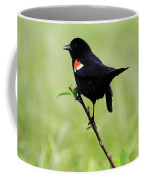 Red Winged Blackbird Coffee Mug