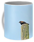 Red-winged Blackbird On Lookout Duty Coffee Mug