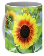 Red Yellow Sunflower Coffee Mug