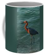 Reddish At Sunset Coffee Mug