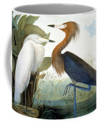 Reddish Egret, Coffee Mug by Granger