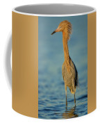 Reddish Egret Coffee Mug