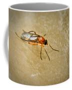 Redfly With Black Eyes Coffee Mug