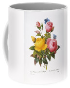 Redoute: Roses, 1833 Coffee Mug by Granger