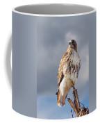 Redtail Portrait Coffee Mug