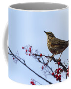 Redwing  - 2 Coffee Mug
