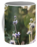 Redwood Meadow Light 2 Coffee Mug