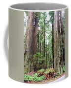 Redwood5 Coffee Mug