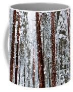 Redwoods In Snow Coffee Mug