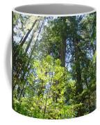 Redwoods Trees Forest Art Prints Baslee Troutman Coffee Mug