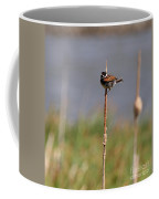 Reed Bunting Singing In Springtime Coffee Mug