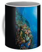Reef Scene With Corals And Fish Coffee Mug by Mathieu Meur