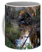 Reflect Upon Autumn Coffee Mug
