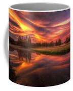 Reflected Reality Coffee Mug