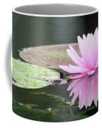 Reflected Water Lily Coffee Mug