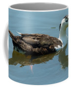 Reflecting Duck Coffee Mug