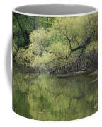 Reflecting Spring Green Coffee Mug