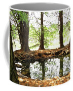 Reflecting Tree Trunks Coffee Mug