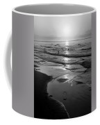 Reflection Of Bird In Flight Coffee Mug