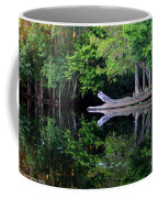 Reflection Off The Withlacoochee River Coffee Mug