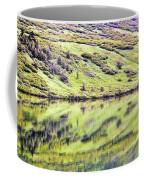 Reflections Alaska  Coffee Mug