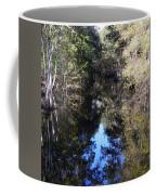 Reflections At Camps Creek  Coffee Mug