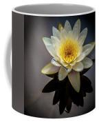 Reflections In A Pond Coffee Mug