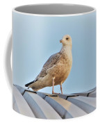 Reflections In The Sun Coffee Mug