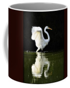 Reflections Of An Angel  Coffee Mug